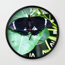 Citrus Butterfly Wall Clock