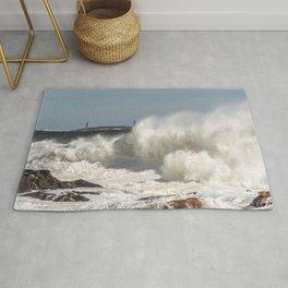 Huge waves on the backshore Rug