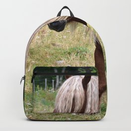 Brown Horse With Blonde Mane Grazing On Meadow Ultra HD Backpack