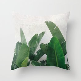 Fresh Banana Leaves against White Wall Throw Pillow