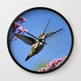 Modern Beauty Wall Clock