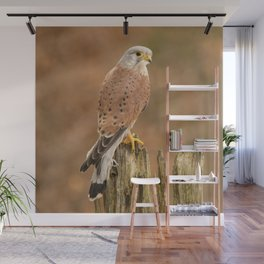Perched Raptor Wall Mural