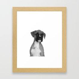 Boxer Pup Framed Art Print