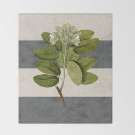 botanical stripes 5 -gray Throw Blanket