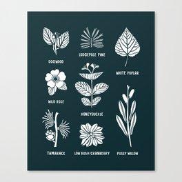 Shrubs & Trees // Navy & White Canvas Print