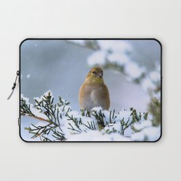 Is This Heaven? (American Goldfinch) Laptop Sleeve