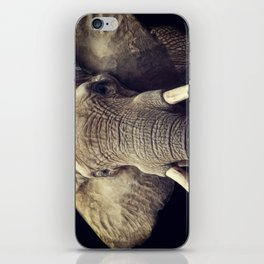 Elephant portrait iPhone Skin