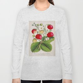 Strawberry Delights Vintage Botanical Floral Flower Plant Scientific Illustration Long Sleeve T-shirt