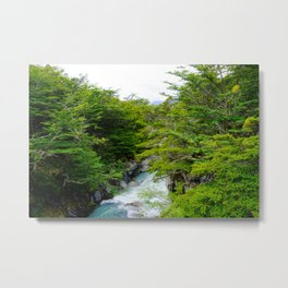 RIVER AND TREES Metal Print