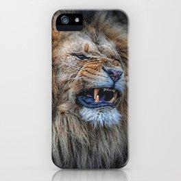 Do not disturb iPhone Case