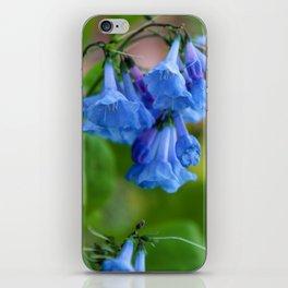 Pop of Blue iPhone Skin