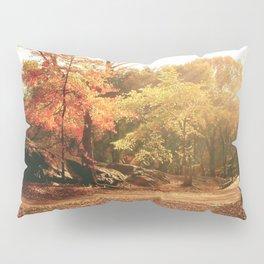Autumn Sunlight - New York City Pillow Sham