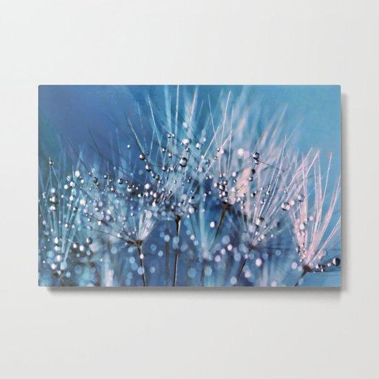 Dew on dandelions Metal Print