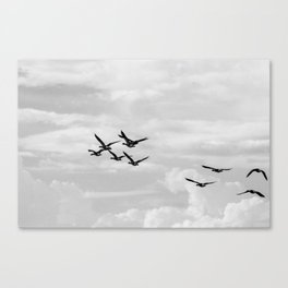 Wild Geese Flying In the Sky Canvas Print