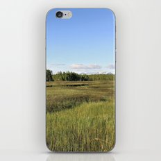 Wetlands iPhone & iPod Skin