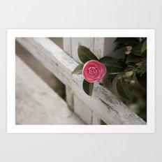 Pink Porch Flower Art Print