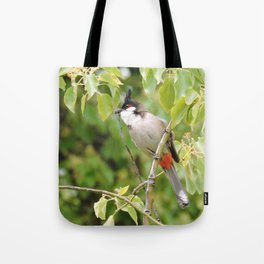 Red-Whiskered Bulbul -- 2 Tote Bag