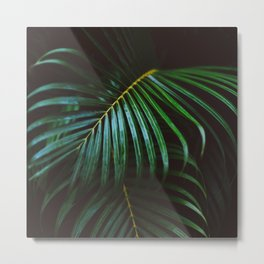 Tropical Palm Leaf Metal Print