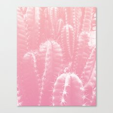 Pastel cactus love Canvas Print