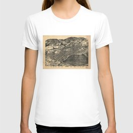 Bird's Eye View of Aspen, Colorado (1893) T-shirt
