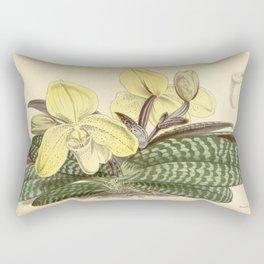 Paphiopedilum concolor Rectangular Pillow