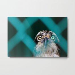 ABSTRACT PHOTO OF OSPREY BIRD Metal Print