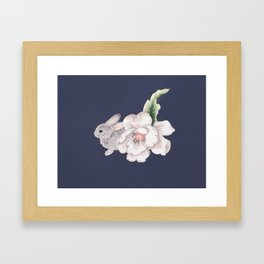 Shy Bunny Framed Art Print