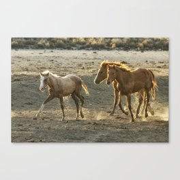 Sparked by Water Canvas Print