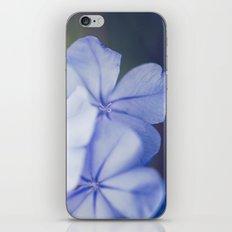 Spring Dreams iPhone & iPod Skin