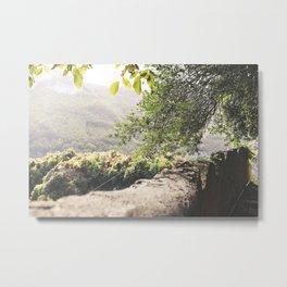 Olive Afternoon Metal Print
