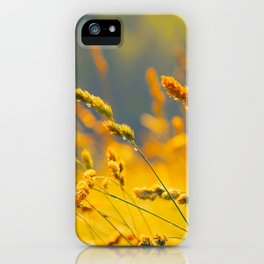 Yellow Wheat Field iPhone Case