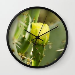 Englemann's Prickly Pear Wall Clock