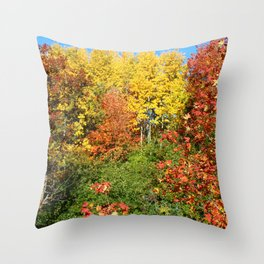 Colorful fall leaves. Throw Pillow