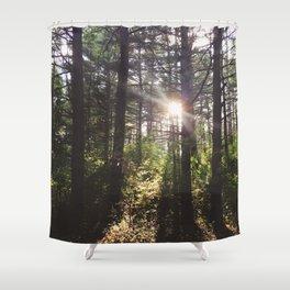 Forest Sun Shower Curtain