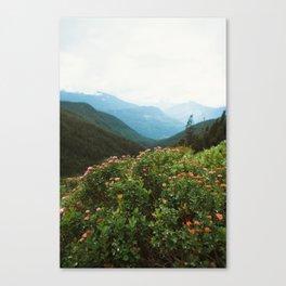Alpine Meadow Flowers Canvas Print