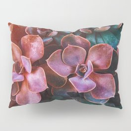 Purple and Green Succulents Pillow Sham