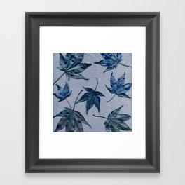 Japanese maple leaves - blue on faded lavender Framed Art Print