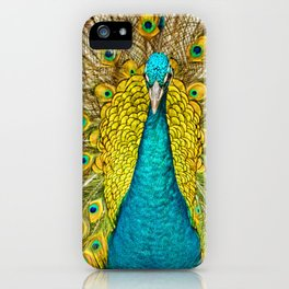 The plumage of the peacock iPhone Case