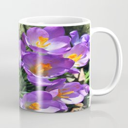 Crocus Flowers - The first Sign of Spring Coffee Mug