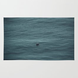 Harbour Seal Rug