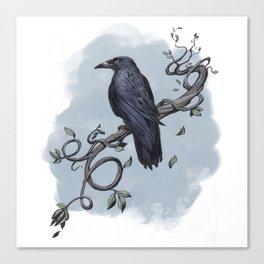 Carrion Crow Canvas Print