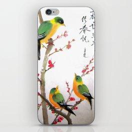 green bird chatting iPhone Skin