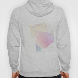 Colorful Horse Silhouette By Annie Zeno Hoody
