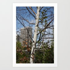 City in the branches Art Print