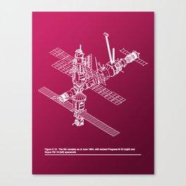 Space Station Mir Canvas Print