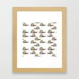 Candied Snails Framed Art Print