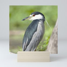 Watercolor Bird Heron, Over The Shoulder Mini Art Print