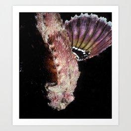 Spotted Scorpionfish Art Print