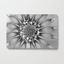 Nature's Details Metal Print