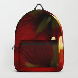 AZUCENA Backpack